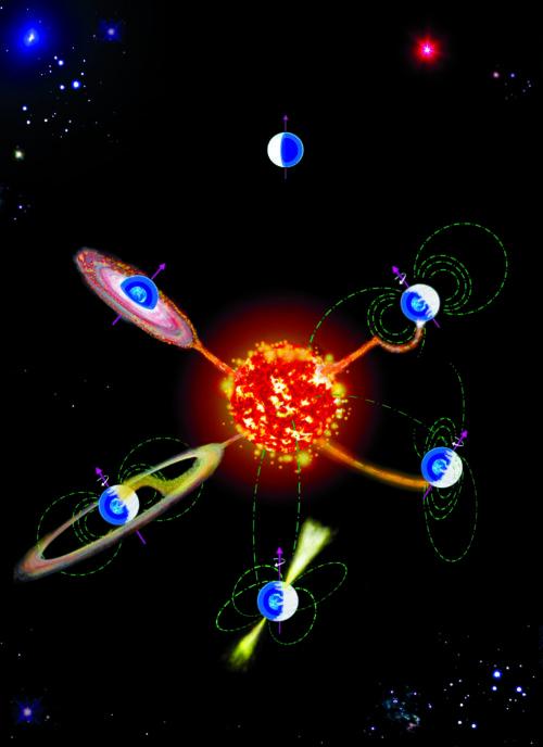 krachtige magnetische velden witte dwergsterren